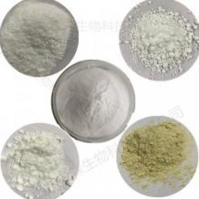 羧甲基纤维素钠是一种白色或淡黄色的纤维状粉末,无臭、无味,易分散于水中成为透明的胶体,羧甲基淀粉钠外观与它非常相像,其实它们之间存在这很大的区别。